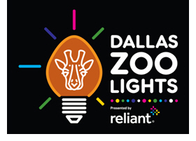 Introducing Dallas Zoo Lights, a Bright New Holiday Celebration